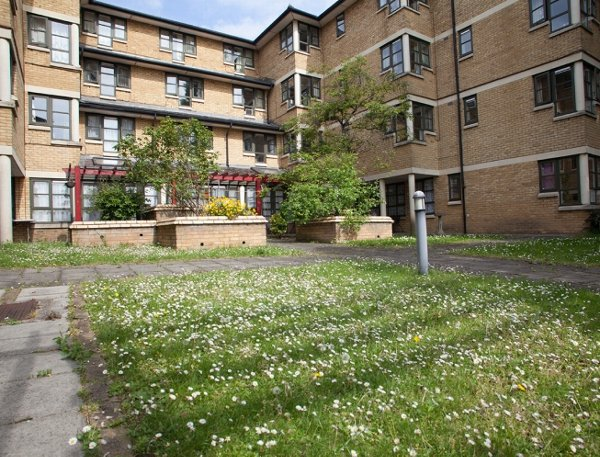 Alan Morkill House Care Home in London rear exterior of home