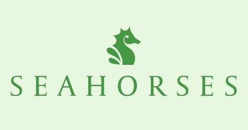 Seahorses Care Home